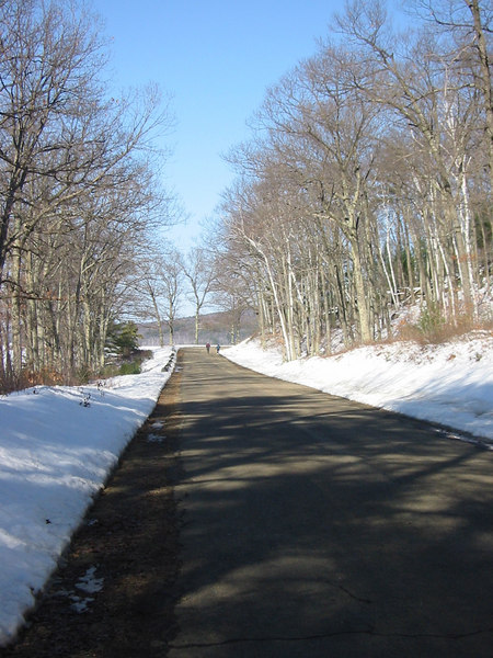 Road to the Dike