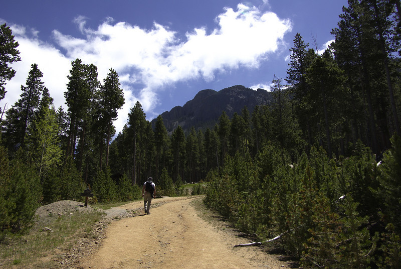 On our way up to the Twin Sisters trail