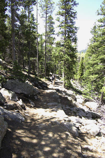 Twin Sisters trail