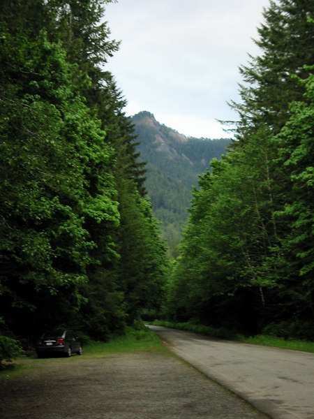 Olympic National Park.  Road by the trail head.