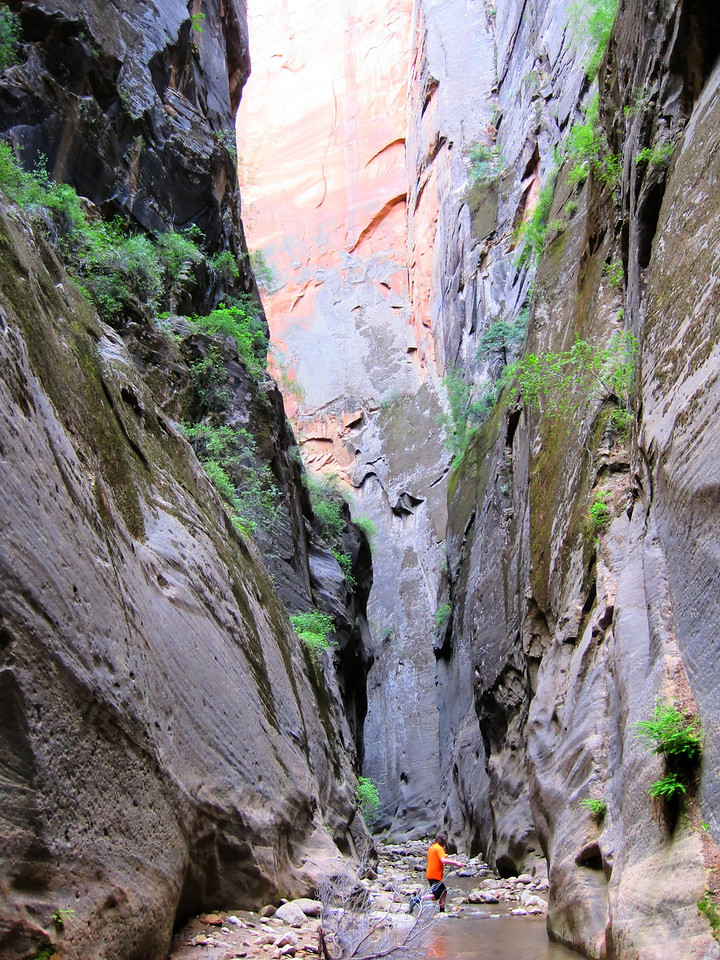 Zion national park Utah Narrows