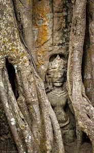 Web Hidden Statue