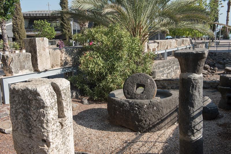 Olive Press, Capernaum