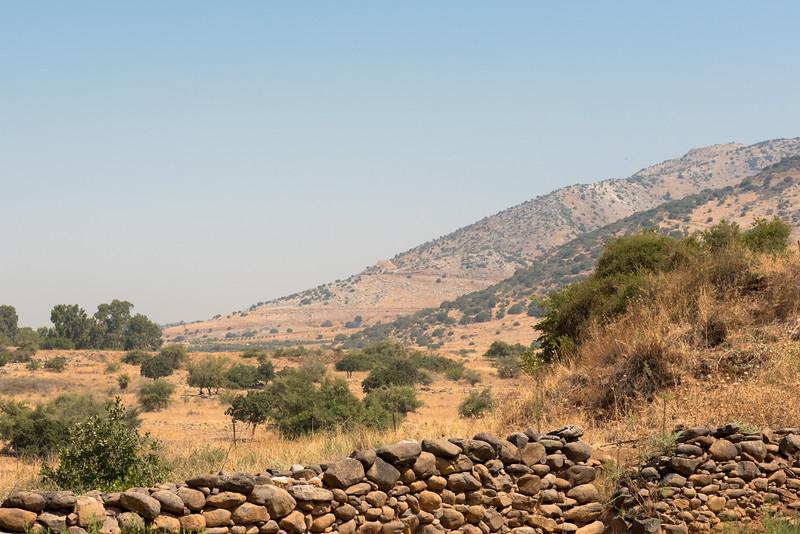 View near Tel Dan