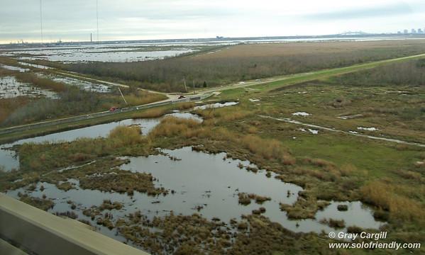 New Orleans wetland