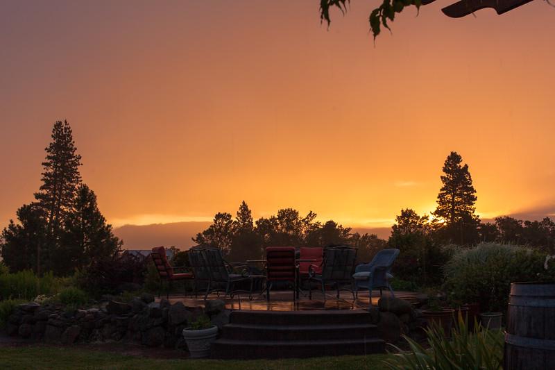Vineyard View Sunrise