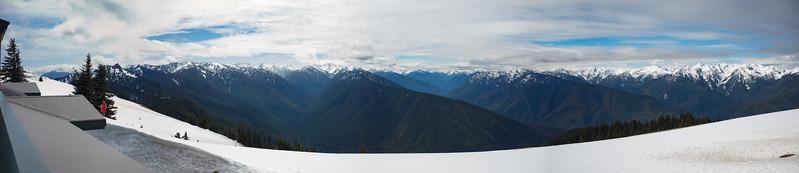 Hurricane Ridge View