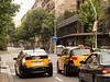 Most of the cabs in the city are Priuses.
