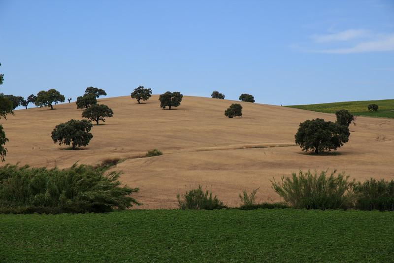Then through the countryside to Sevilla . . .
