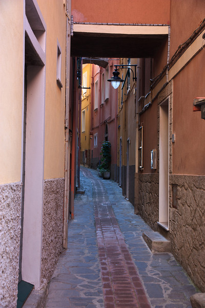 The streets of Manarola, like most of the towns in Cinque Terre, are narrow and winding.