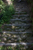 The steps looked like they had been there for hundreds of years -- and they kept going up and up . . .