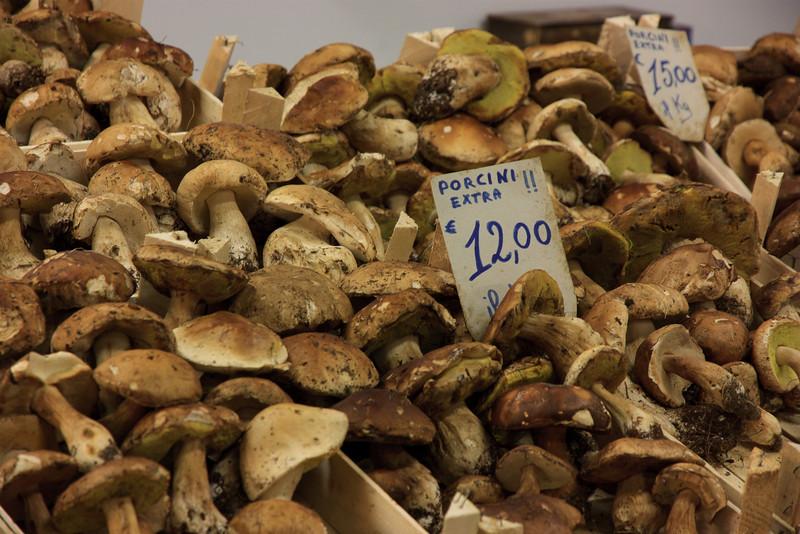 . . . to the seasonal delicacy, Porcini mushrooms . . .