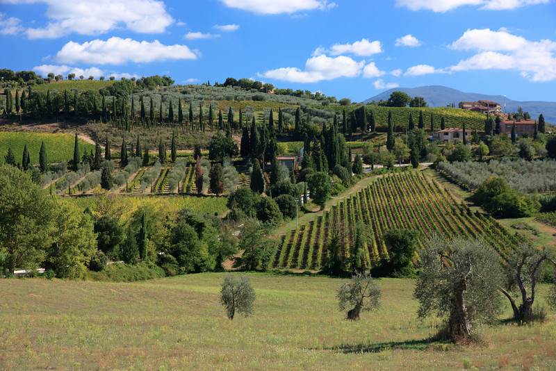The landscape surrounding the Abbey, just outside the town of Castelnuovo del'Abate.