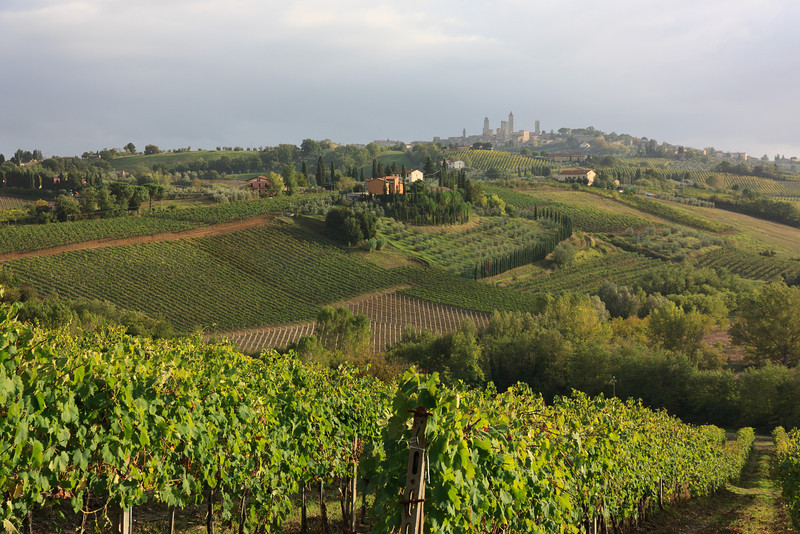After the cooking class we explored the back roads for a while and then went into San Gimignano for our last visit.