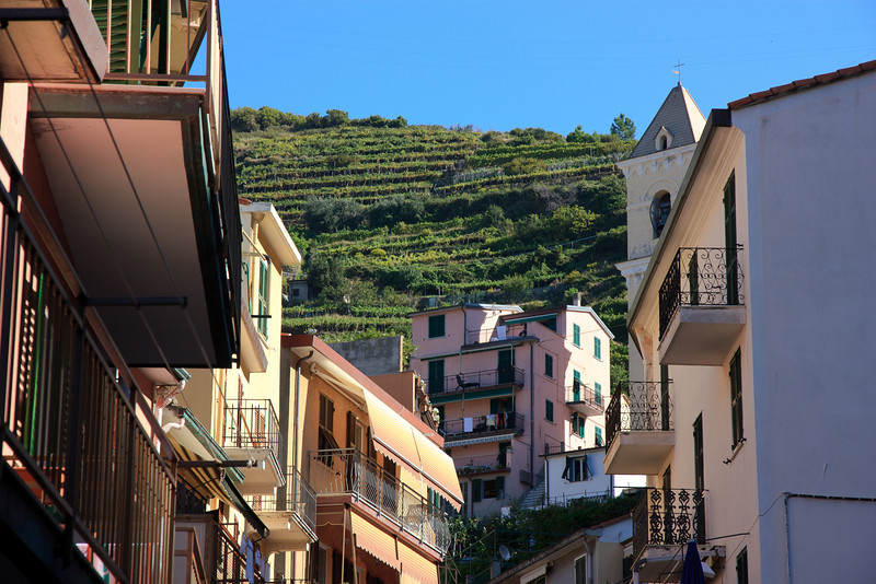 The hillside above the small village is terraced with vineyards.