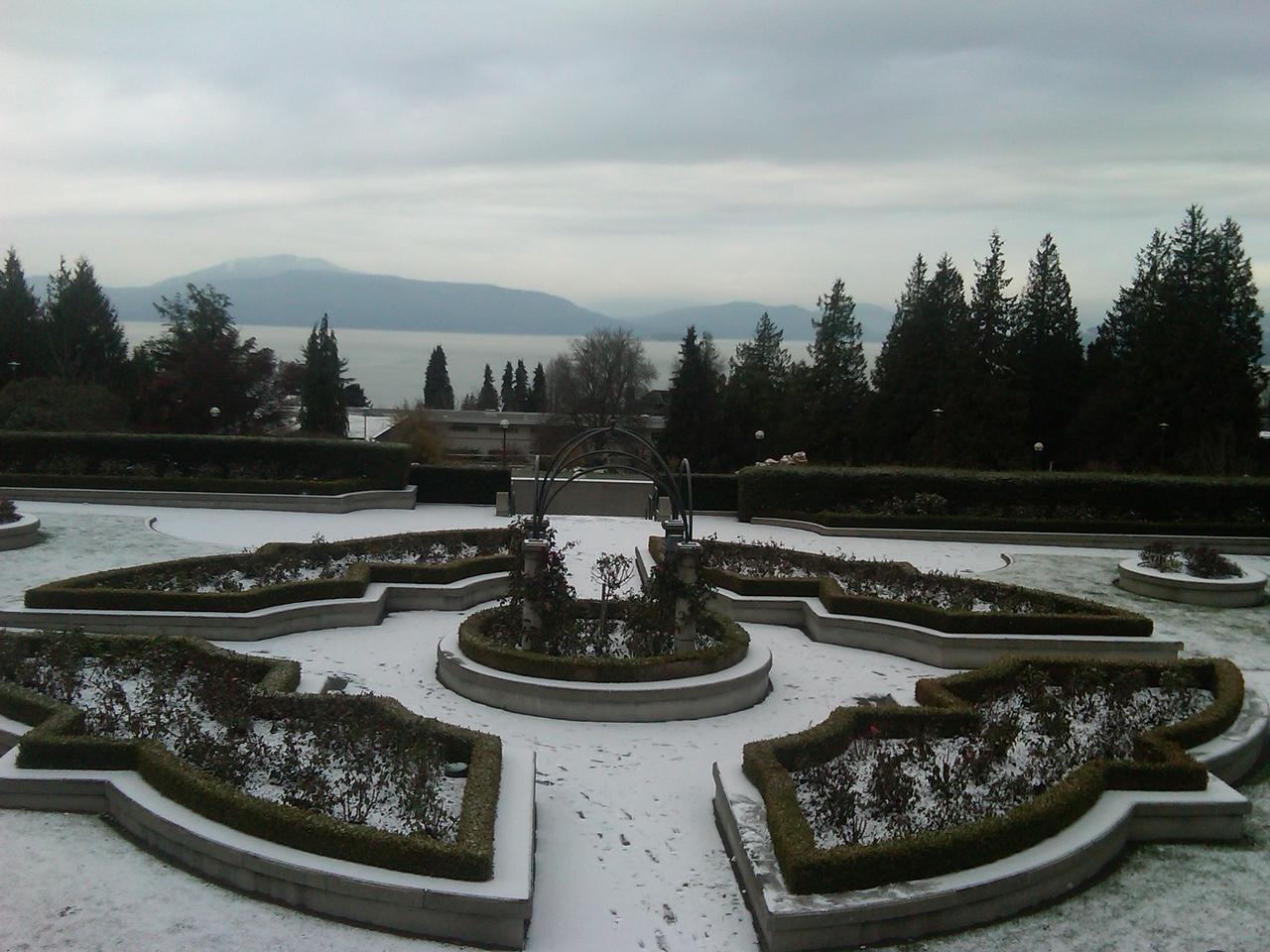 Rose garden at UBC