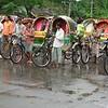 Dhaka: rickshaw wallahs