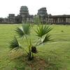Angkor Thom (Angkor Wat)