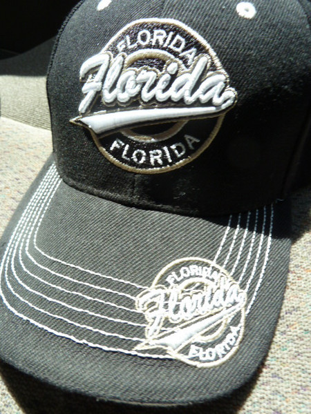 "taxi driver's hat - Where do you suppose he got it? (It says ""Florida"" only six times.)"