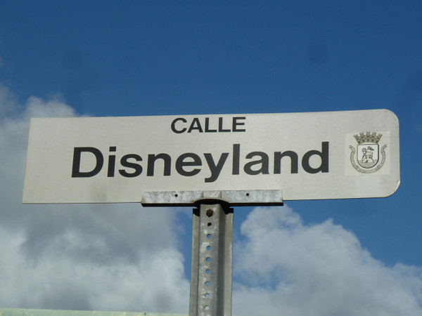 Can you imagine living on Disneyland Street? If I found the perfect house and the Realtor told me it was on a street with this name, I would forget about making that purchase.