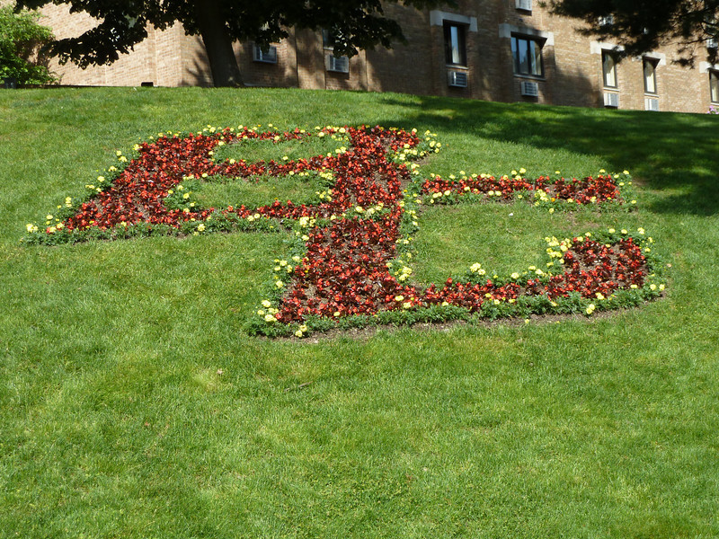 BC = Boston College, in flowers