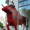 bull<br /> Note the soccer ball on one of the horns. There is a big soccer event in town now.