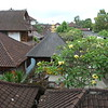 Ubud<br /> housetops, Jalan (road) Hanoman<br /> from Blackbeach Italian Restaurant