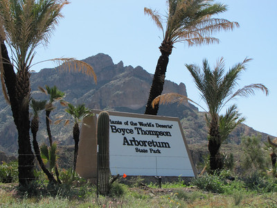 Boyce Thompson Arboretum State Park Superior, Arizona 85273