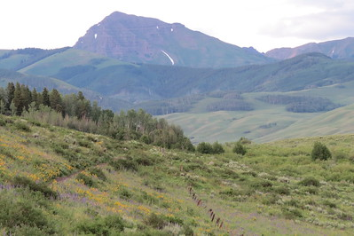 IMG_0024 Brush Creek Trail Crested Butte CO