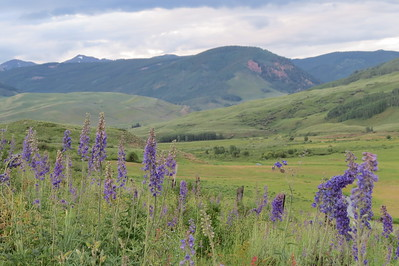 IMG_0022 Brush Creek Trail Crested Butte CO
