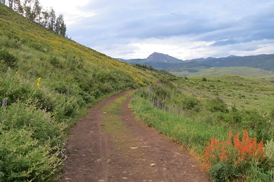 IMG_0028 Brush Creek Trail Crested Butte CO