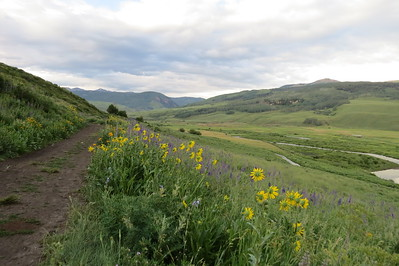 IMG_0010 Brush Creek Trail Crested Butte CO