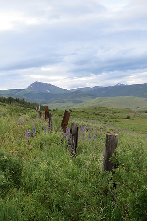 IMG_0047 Brush Creek Trail Crested Butte CO