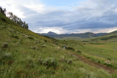 IMG_0027 Brush Creek Trail Crested Butte CO