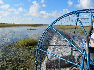 Everglades NP