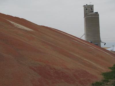 IMG_8938 Dresden, Kansas Milo Mountain