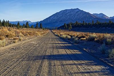 Road to Topaz Lake