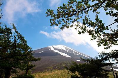 Mt Fuji in the Summer | Japan
