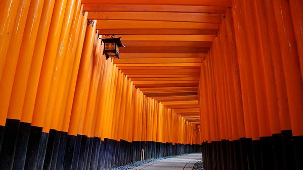 Beyond the Torii Gates | Kyoto, Japan