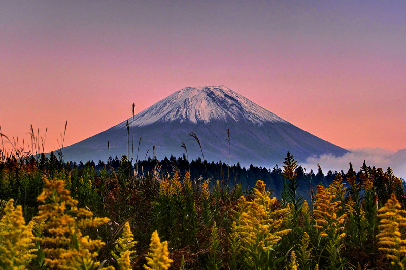 Autumn Mt Fuji | Japan