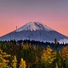 Autumn Mt Fuji | Japan