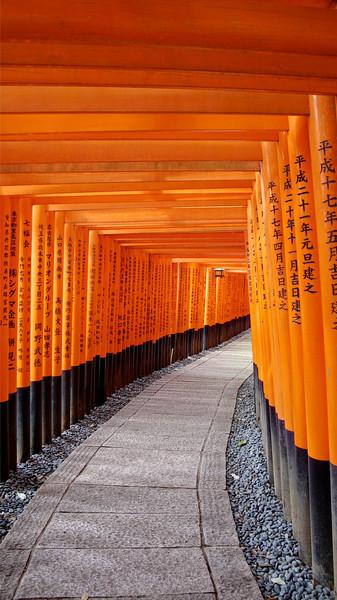 Life's Tunnel | Kyoto, Japan