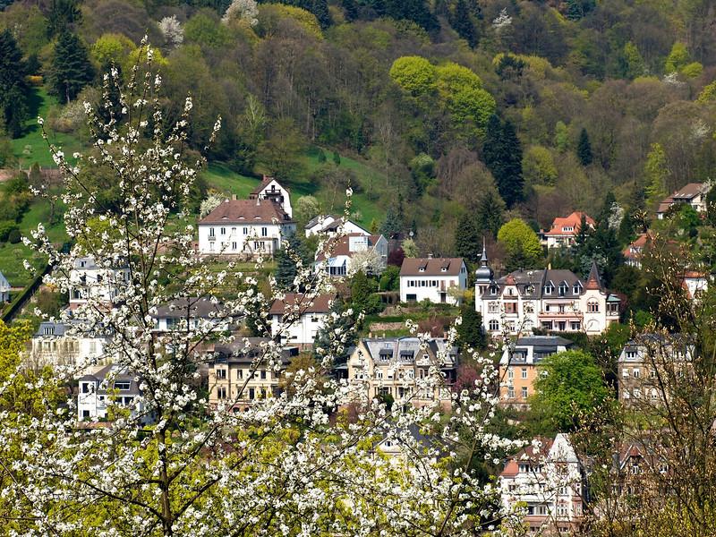 Blooming Europe   Germany