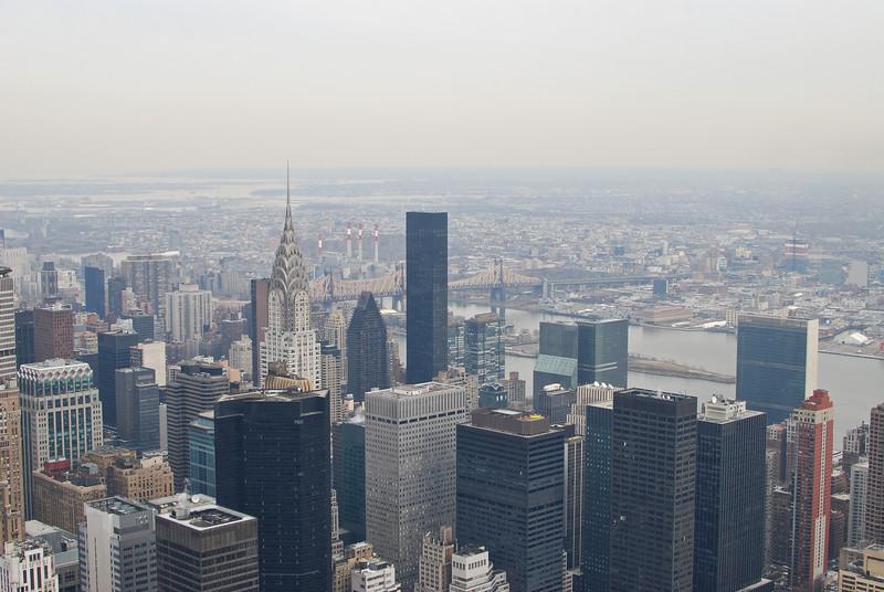 Concrete Jungle | New York City