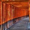 Through the Thousand Torii Gates | Japan