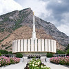 Blossoming Provo Temple | Utah