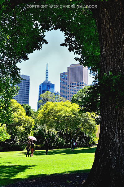 Skyline of the city from Fitzroy Gardens.