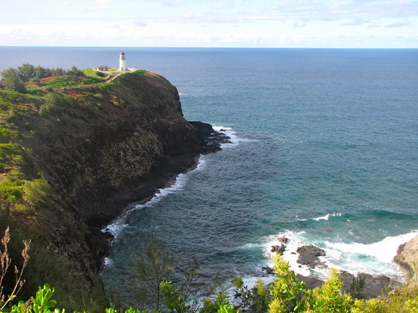 After our beach/snorkeling day we made a visit to Kilauea Lighthouse which is the most Northern point of Kauai, Hawaii... safe to say the views of the Ocean are pretty fabulous up there!