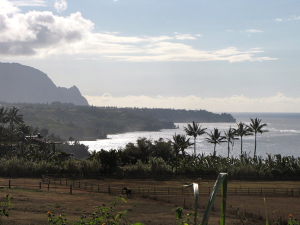 A great way to end a great day and another memorable anniversary... with a fabulous view of Kauai's Northshore up near the Kilauea Lighthouse