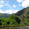 There's another look into the Halawa Valley